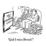 missing brexit